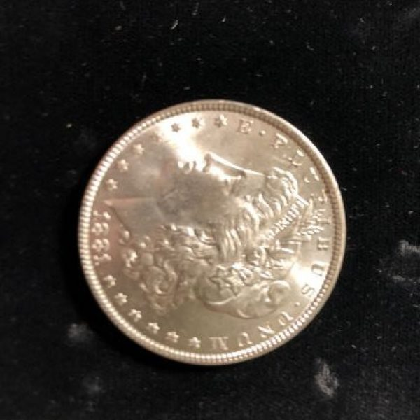 1881 P Morgan Dollar in Uncirculated