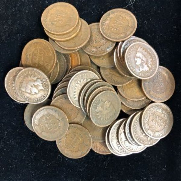 Bulk Indian Head Pennies  (50 coins!)